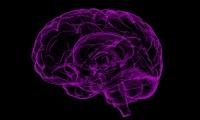 """""""光+声音""""!Cell:科学家们的无创疗法,或可治疗阿尔兹海默症"""