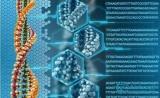 后GWAS时代,我们如何解读与疾病相关的非编码区SNP?
