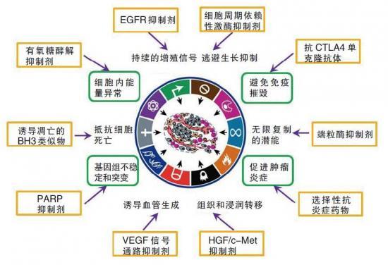 癌细胞十大特征