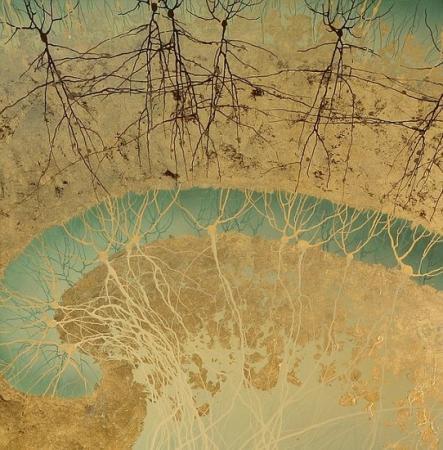 植物神经元细胞gif
