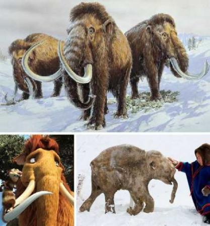十大最值得期待复活的灭绝物种