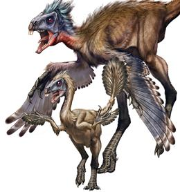 "NATURE:恐龙从小到大""换羽""数次"