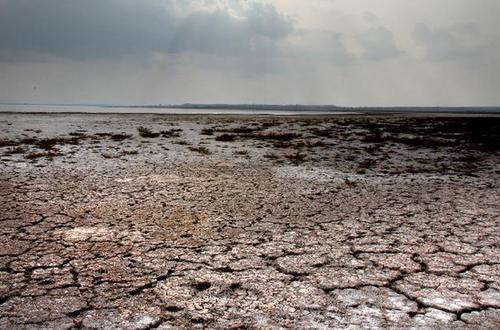 中国最大沙漠淡水湖面临干涸危机