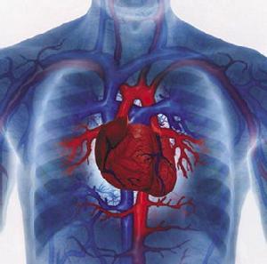 我国每分钟约6人死于心血管病