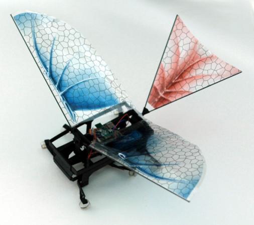 美科学家发明六足机器昆虫探秘鸟类飞行进化