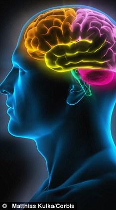 基因表达图谱为大脑疾病的治疗提供新视角