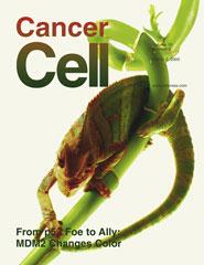 Cancer Cell:一基因过度表达与胰腺癌发病有关