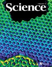Science:研究人员找到探索人类基因组新方法