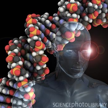 《科学家》:挑战癌症基因组
