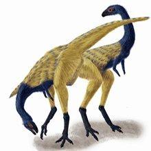 北美发现如食肉恐龙化石同家鸡一般大小