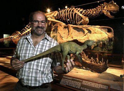 美曾展出全球最小恐龙化石 高仅10公分