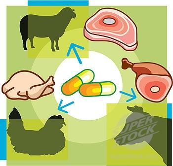 避免间接增加人类抗药性FDA限制对家畜注射抗生素