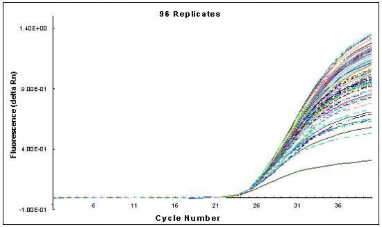 实时荧光定量pcr:一种科学准确的定量方法