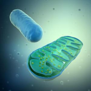 Science:研究表明一些艾滋病药物可引起早衰