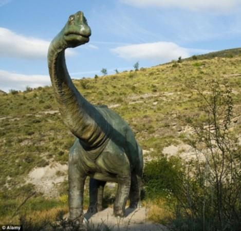 恐龙原来是热血动物