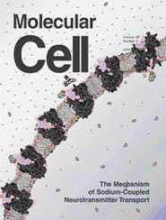 Molecular Cell:神经递质转运机制的新发现