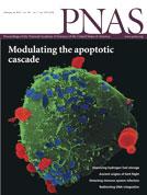 PNAS:能促进骨骼生长的胶囊