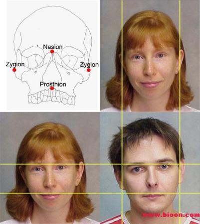 PLoS ONE:异性眼光决定人类面部进化