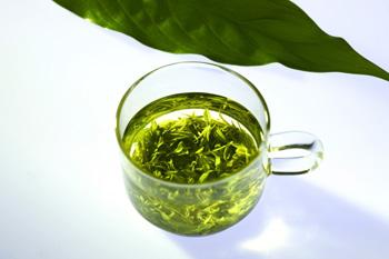 澳洲新发现:洋葱绿茶橄榄叶可对抗肥胖症