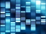 第三代测序技术可用单个细胞分析基因组