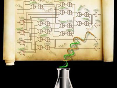 在传统计算机中,集成电路的基本元件逻辑门由晶体管制成,但在这一