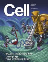 Cell:microRNA对基因表达转录调控