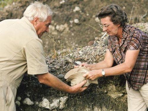 国家地理120年九大发现:利基夫妇发现进化证据