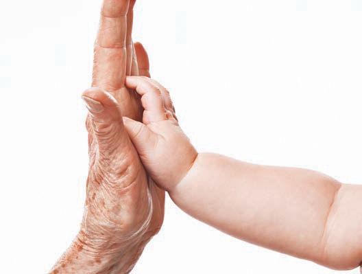 科学家研制长寿药物 实验小鼠寿命延长12%