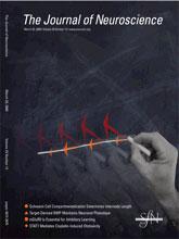 J.Neurosci.:智商与受基因控制的髓磷脂有关