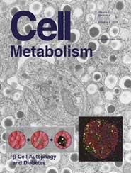 Cell Metabolism:胰腺β细胞自噬与糖尿病的关联