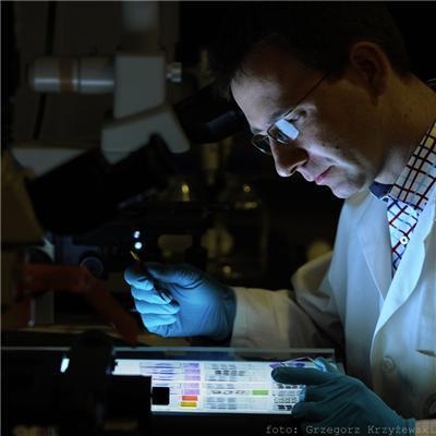 Science:新技术成功重建小鼠脑神经线路
